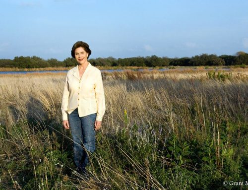 Laura Bush's Texas conservation nonprofit chooses four projects to support this year