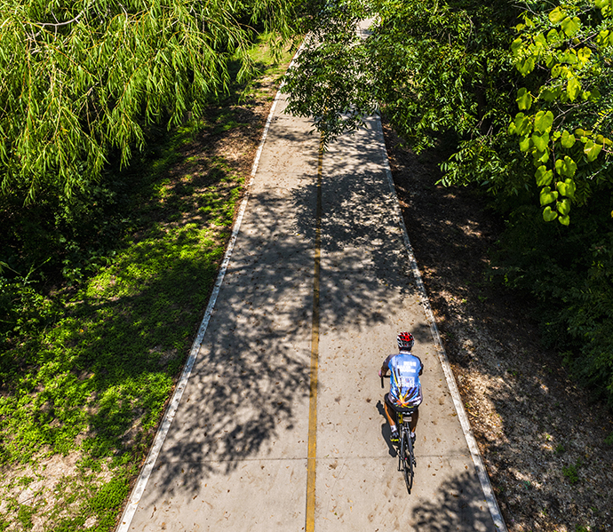 Cyclist on a tree lined Dallas Trail