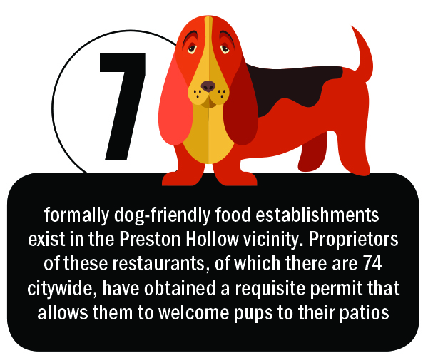 7 formally dog-friendly food establishments exist in the Preston Hollow vicinity. Proprietors of these restaurants, of which there are 74 citywide, have obtained a requisite permit that allows them to welcome pups to their patios