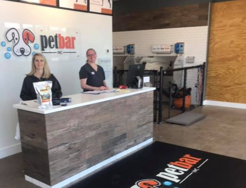 Petbar holds grand opening at Preston Hollow location